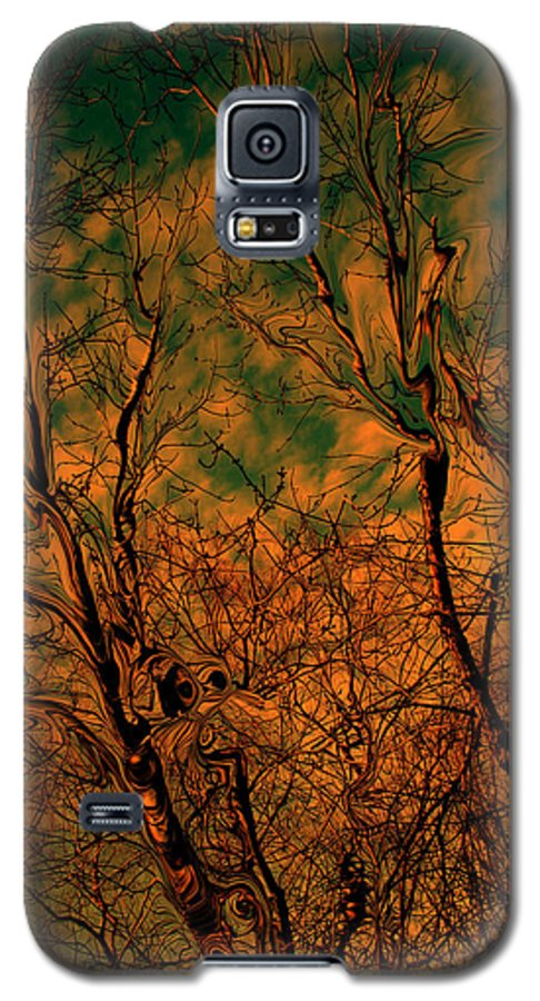 Trees Galaxy S5 Case featuring the photograph Tree Abstract by Linda Sannuti