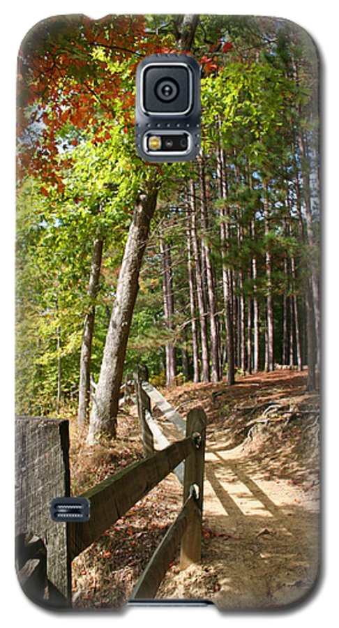 Tree Galaxy S5 Case featuring the photograph Tree Trail by Margie Wildblood
