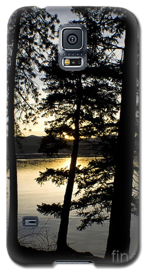 Trees Galaxy S5 Case featuring the photograph Trees By The Lake by Idaho Scenic Images Linda Lantzy