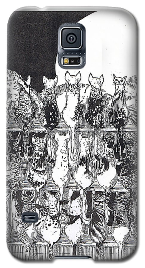 Cats Galaxy S5 Case featuring the drawing Two Dozen And One Cats by Seth Weaver
