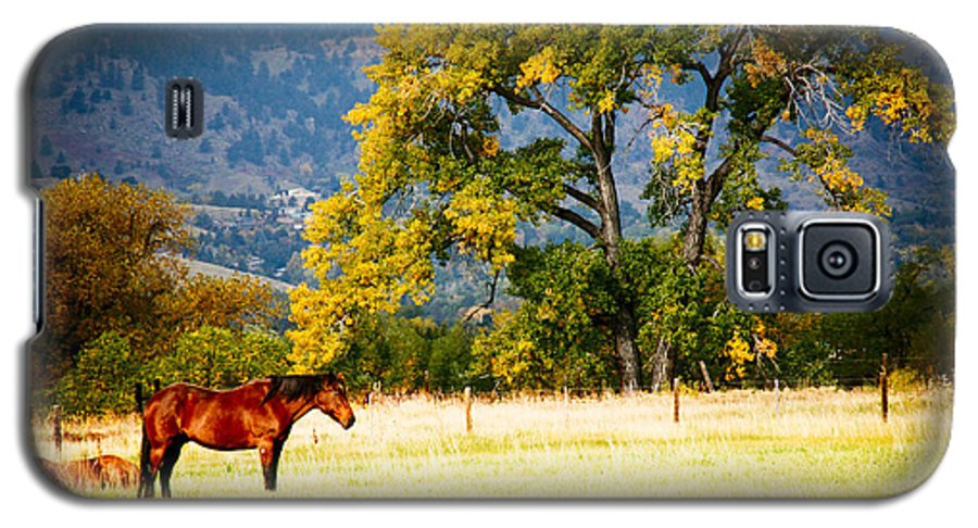 Animal Galaxy S5 Case featuring the photograph Two Horses by Marilyn Hunt