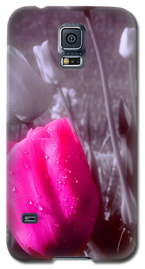 Flower Galaxy S5 Case featuring the photograph Uniqueness by Kenneth Krolikowski