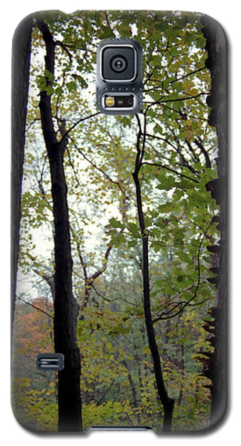 Tree Galaxy S5 Case featuring the photograph Vertical Limits by Randy Oberg
