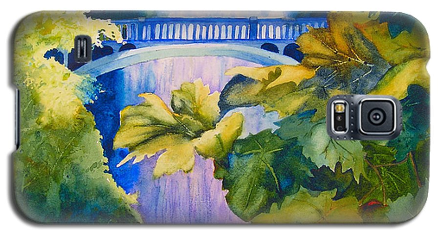 Waterfall Galaxy S5 Case featuring the painting View Of The Bridge by Karen Stark