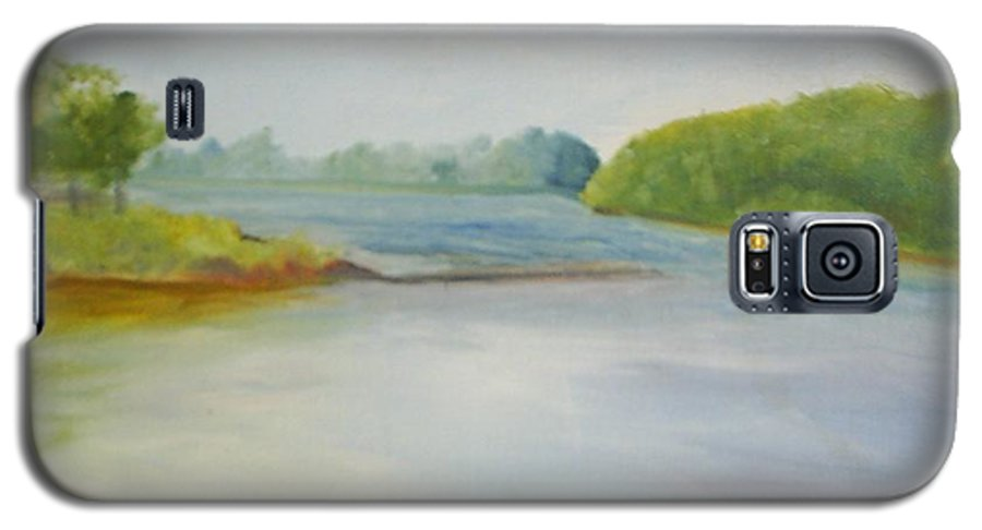 Delaware River Galaxy S5 Case featuring the painting View Of The Delaware by Sheila Mashaw