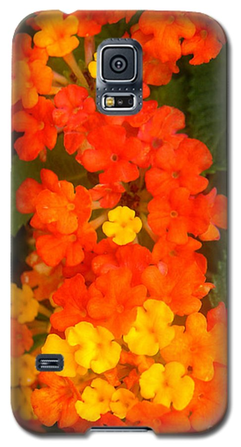 Nature Galaxy S5 Case featuring the photograph Volcanic Display by Lucyna A M Green