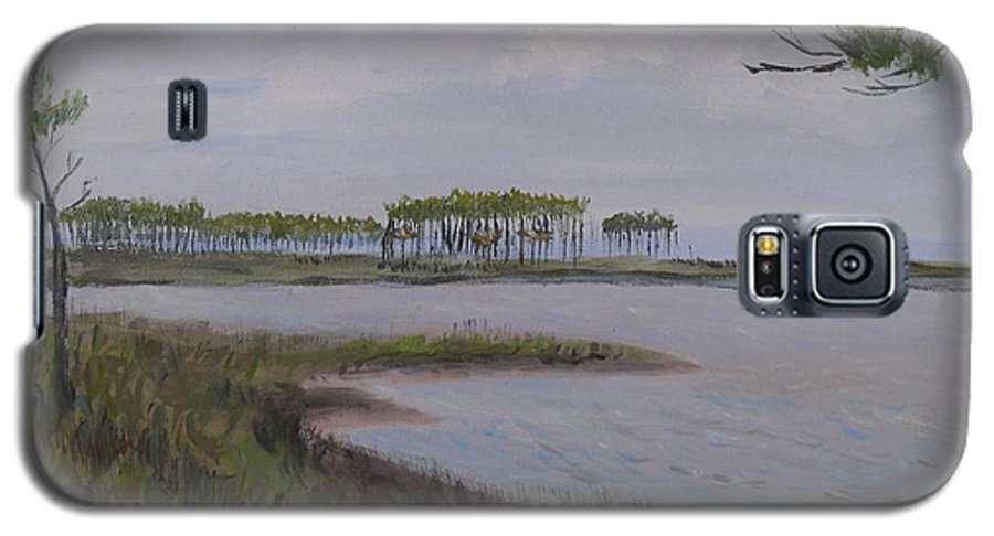 Landscape Beach Coast Tree Water Galaxy S5 Case featuring the painting Water Color by Patricia Caldwell