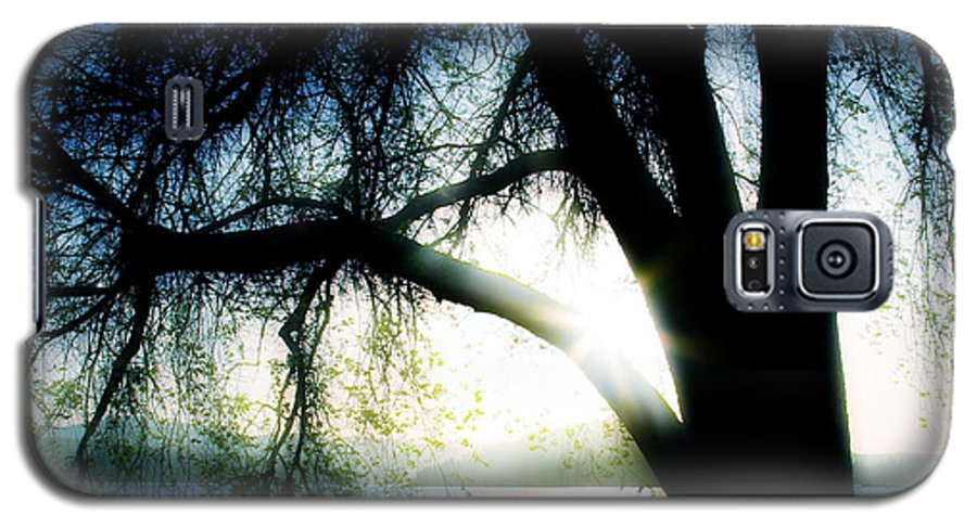 Weesping Galaxy S5 Case featuring the photograph Weeping by Idaho Scenic Images Linda Lantzy