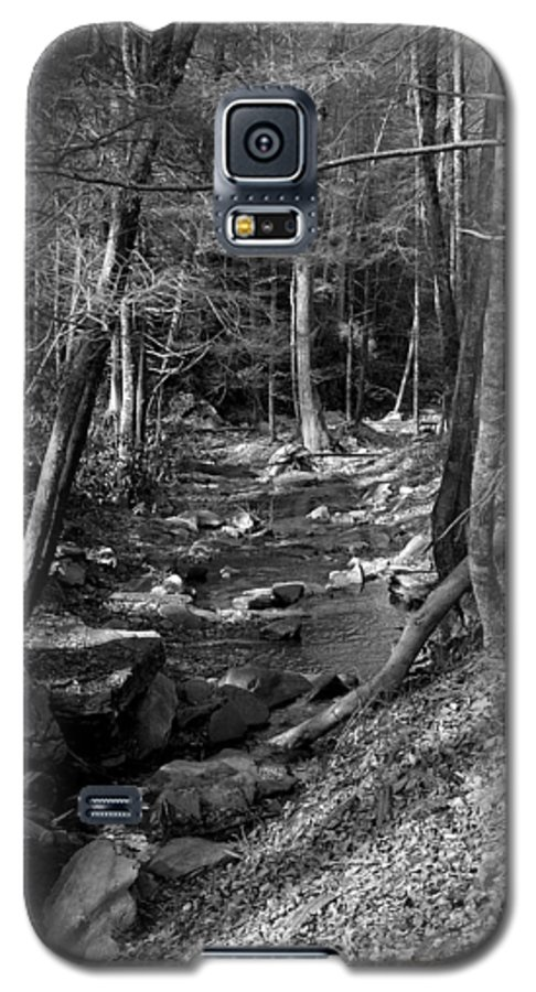 Nature Galaxy S5 Case featuring the photograph Wesser Creek Trail by Kathy Schumann