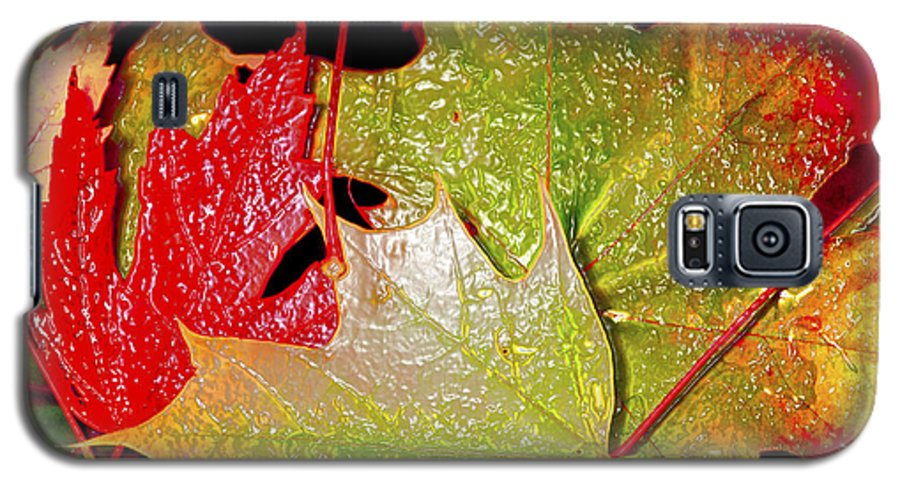 Leaves Galaxy S5 Case featuring the photograph Wet Leaves Of Fall by Larry Keahey