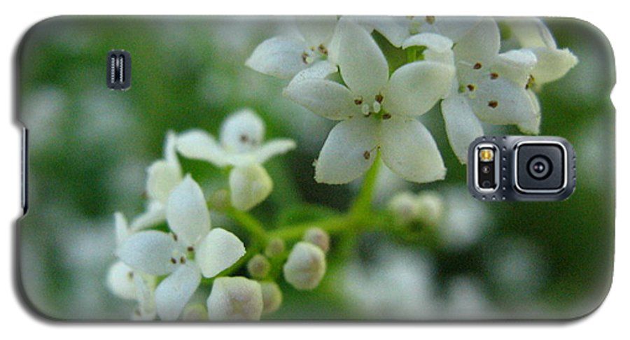Flower Galaxy S5 Case featuring the photograph White Floral Cluster by Melissa Parks