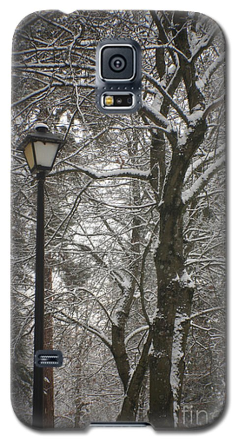 Lamp Galaxy S5 Case featuring the photograph Winter Lamp Post by Idaho Scenic Images Linda Lantzy