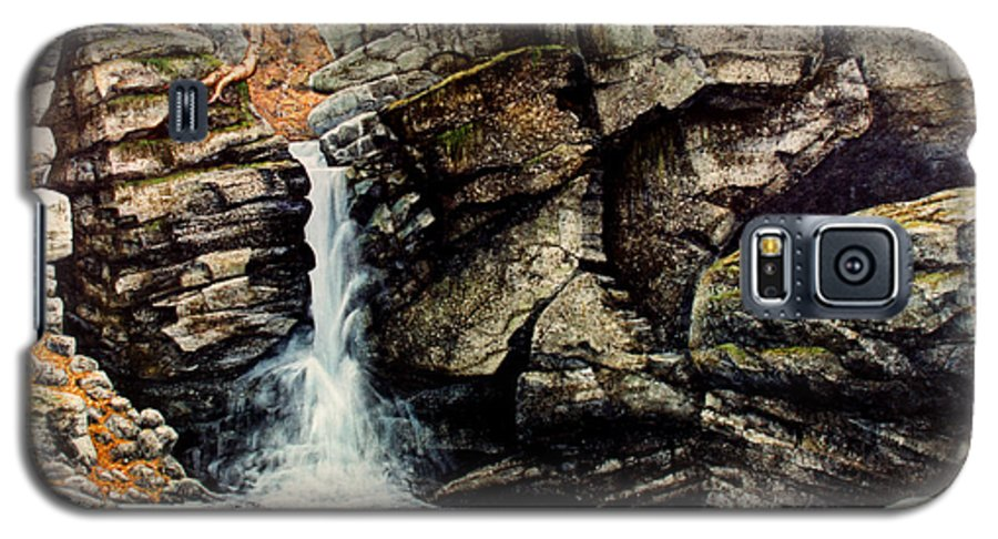 Waterfall Galaxy S5 Case featuring the painting Woodland Falls by Frank Wilson