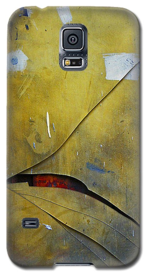 Abstract Galaxy S5 Case featuring the photograph Xalapa Miro by Skip Hunt