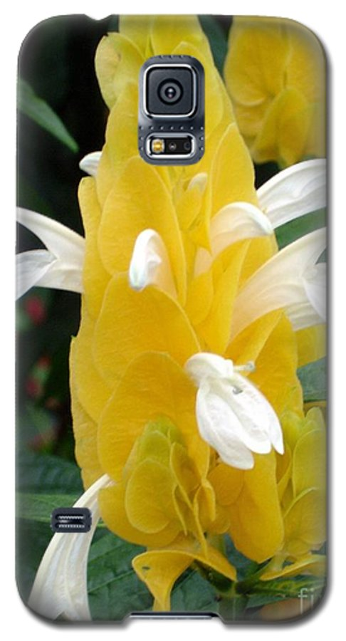 Flower Galaxy S5 Case featuring the photograph Yellow Eruption by Shelley Jones