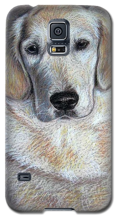 Dog Galaxy S5 Case featuring the pastel Young Golden Retriever by Nicole Zeug