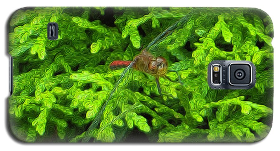 Scarlet Galaxy S5 Case featuring the photograph Scarlet Darter Male Dragonfly by Rockin Docks
