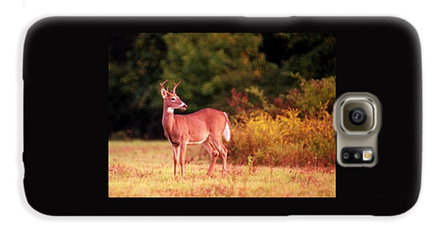 Deer Galaxy S6 Case featuring the photograph 070406-58 by Mike Davis