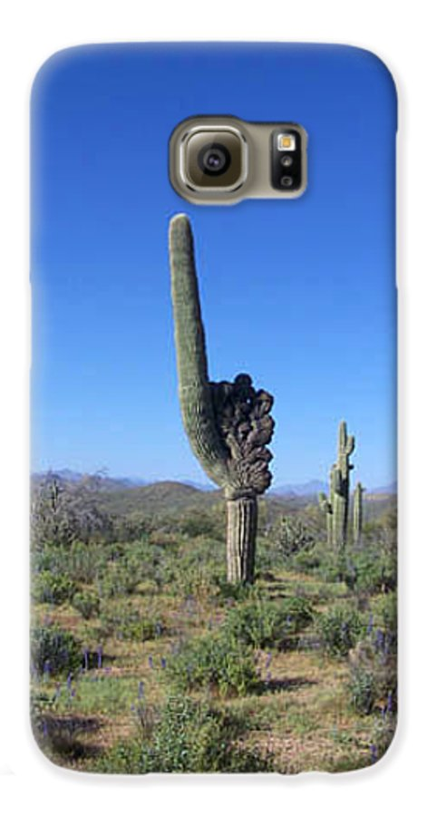 Sahuaro Galaxy S6 Case featuring the photograph Arizona Is Number One by Kathy McClure