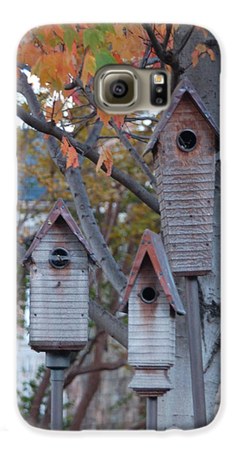 Birdhouse Galaxy S6 Case featuring the photograph Awaiting Spring by Suzanne Gaff