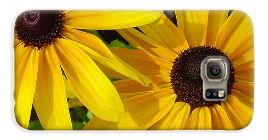 Black Eyed Susan Galaxy S6 Case featuring the photograph Black-eyed Susans Close Up by Suzanne Gaff