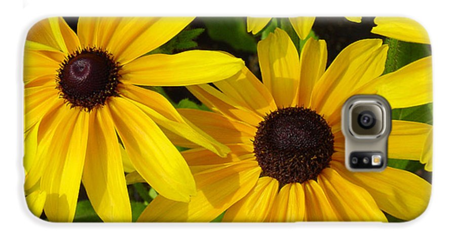 Black Eyed Susan Galaxy S6 Case featuring the photograph Black Eyed Susans by Suzanne Gaff