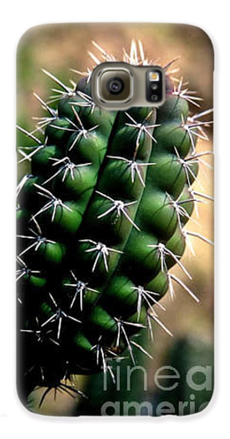 Sahuaro Galaxy S6 Case featuring the photograph Cactus Arm by Kathy McClure