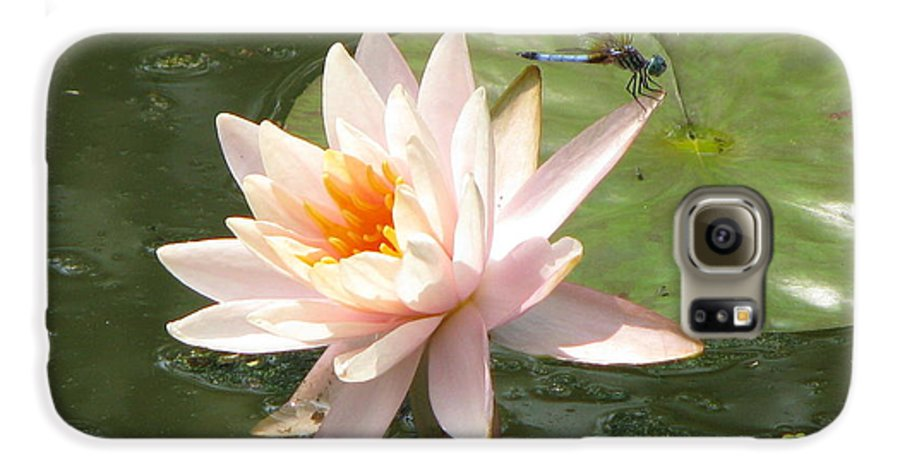 Dragon Fly Galaxy S6 Case featuring the photograph Dragonfly Landing by Amanda Barcon
