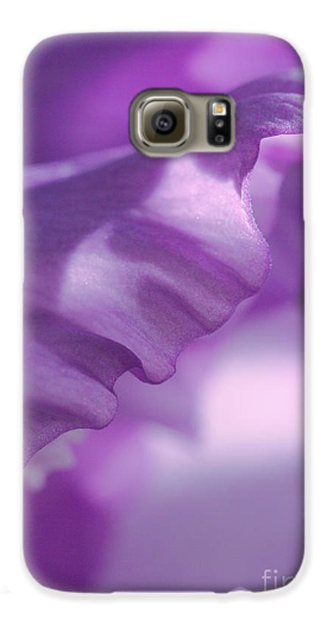 Flower Galaxy S6 Case featuring the photograph Face In A Glad by Steve Augustin