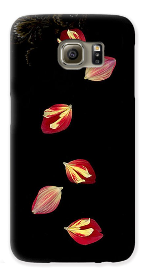 Petal Galaxy S6 Case featuring the photograph Falling by Suzanne Gaff