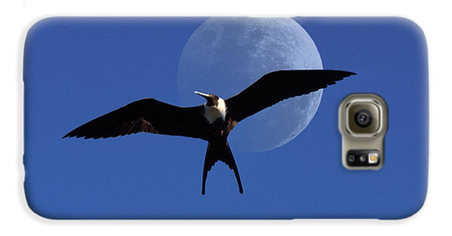 Frigate Galaxy S6 Case featuring the photograph Frigatebird Moon by Jerry McElroy