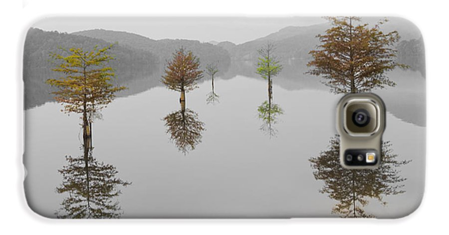 Appalachia Galaxy S6 Case featuring the photograph Hanging Garden by Debra and Dave Vanderlaan