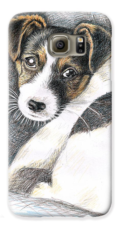 Dog Galaxy S6 Case featuring the drawing Jack Russell Puppy by Nicole Zeug