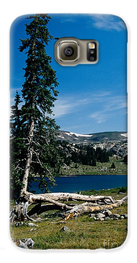 Mountains Galaxy S6 Case featuring the photograph Lone Tree At Pass by Kathy McClure
