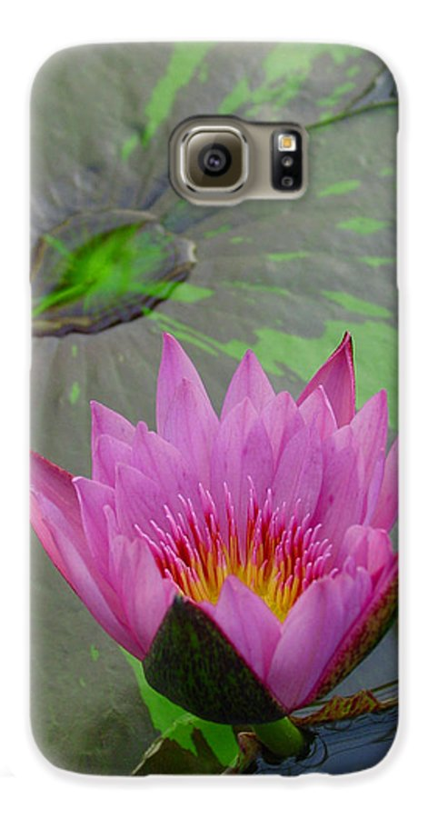 Lotus Galaxy S6 Case featuring the photograph Lotus Blossom by Suzanne Gaff