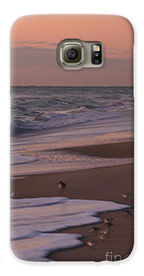 Beach Galaxy S6 Case featuring the photograph Morning Birds At The Beach by Nadine Rippelmeyer
