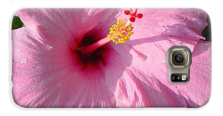 Pink Hibiscus Galaxy S6 Case featuring the photograph Pink Hibiscus by Suzanne Gaff