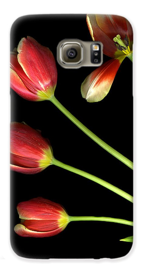 Scanography Galaxy S6 Case featuring the photograph Pot Of Tulips by Christian Slanec