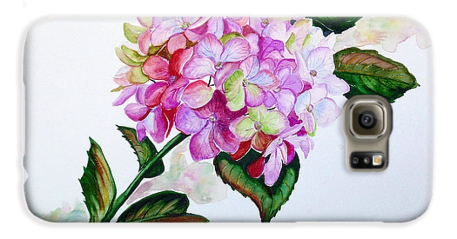 Hydrangea Painting Floral Painting Flower Pink Hydrangea Painting Botanical Painting Flower Painting Botanical Painting Greeting Card Painting Painting Galaxy S6 Case featuring the painting Pretty In Pink by Karin Dawn Kelshall- Best
