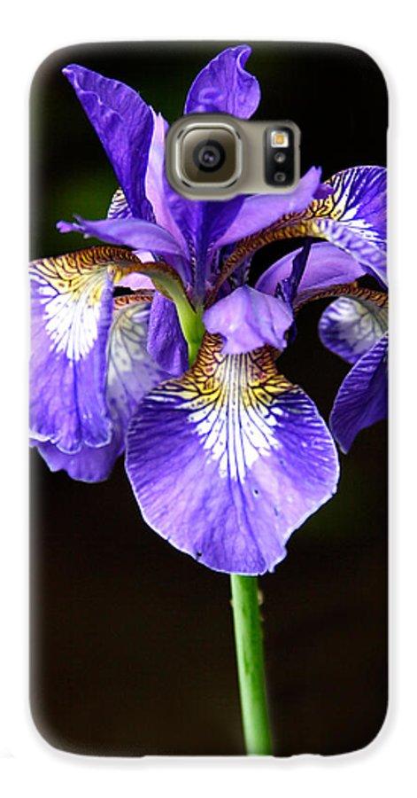 3scape Galaxy S6 Case featuring the photograph Purple Iris by Adam Romanowicz