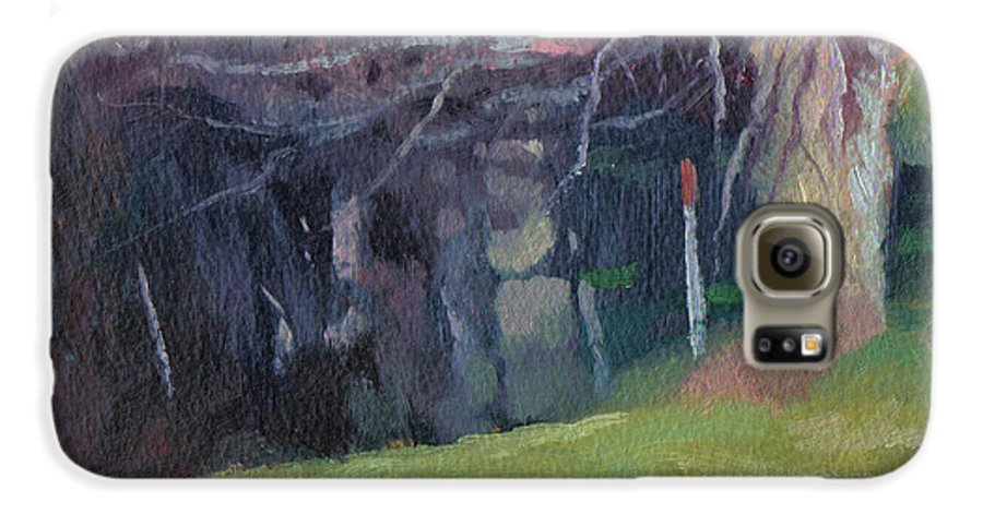 Landscape Galaxy S6 Case featuring the painting Red Top Fence Post by John L Campbell