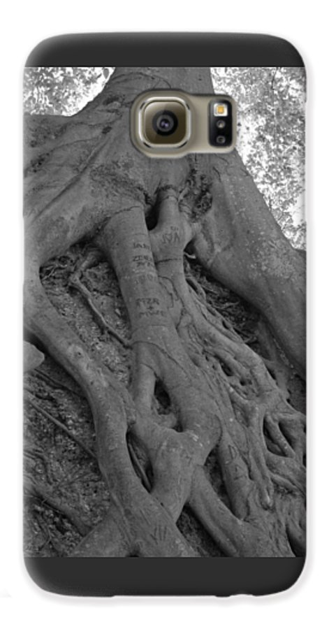 Tree Galaxy S6 Case featuring the photograph Roots II by Suzanne Gaff