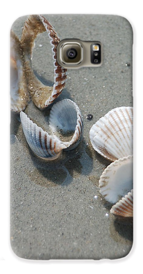 Sea Shell Galaxy S6 Case featuring the photograph She Sells Sea Shells by Suzanne Gaff