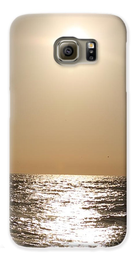 Silver Galaxy S6 Case featuring the photograph Silver And Gold by Nadine Rippelmeyer