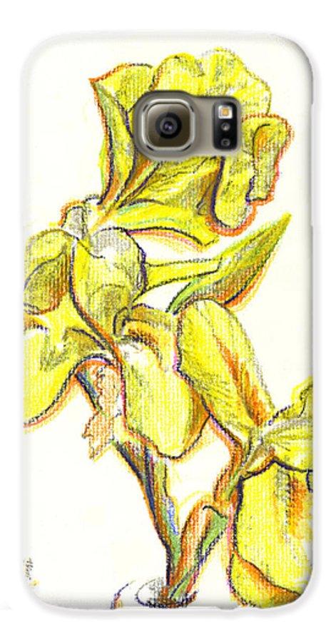 Spanish Irises Galaxy S6 Case featuring the painting Spanish Irises by Kip DeVore