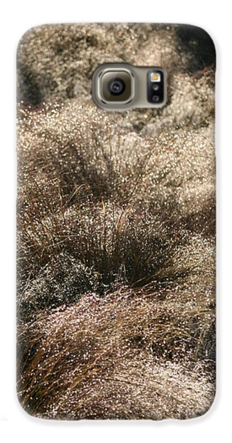 Grasses Galaxy S6 Case featuring the photograph Sparkling Grasses by Nadine Rippelmeyer