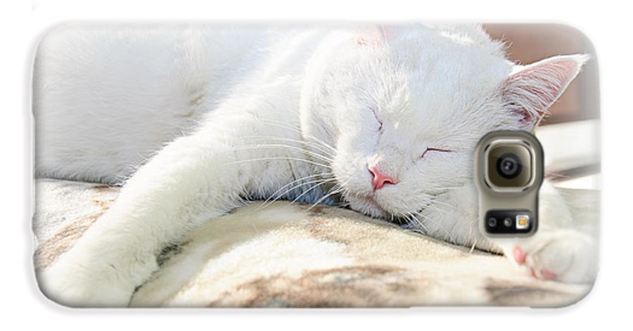 Andee Design Cats Galaxy S6 Case featuring the photograph Sweet Dreams by Andee Design