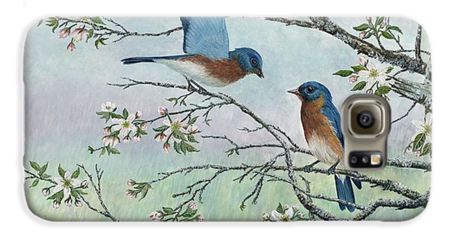 Bluebirds; Trees; Wildlife Galaxy S6 Case featuring the painting The Gift by Ben Kiger