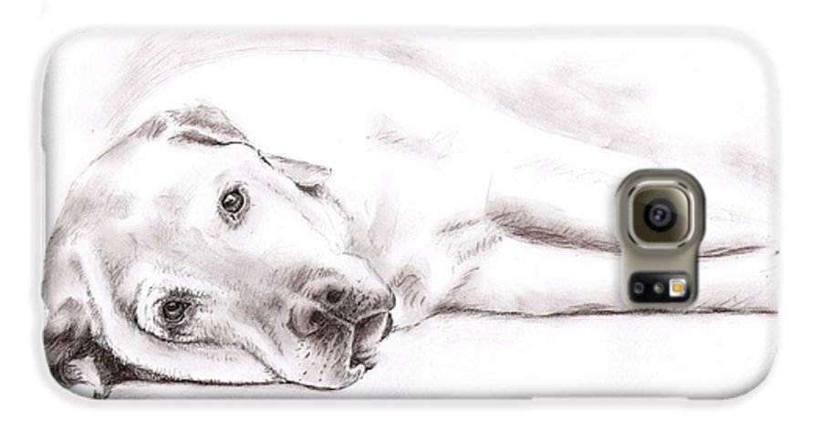 Dog Galaxy S6 Case featuring the drawing Tired Labrador by Nicole Zeug