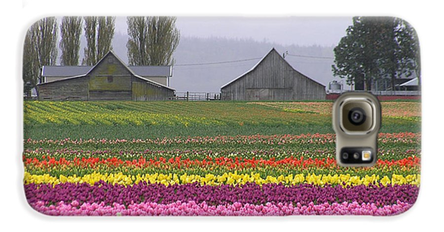 Tulips Galaxy S6 Case featuring the photograph Tulip Town Barns by Louise Magno